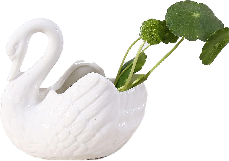 BEELADAN Indoor Ceramic White Swan Planter, Animal Shape Succulent Pot Mini Flower Pot for Home Garden Decoration (White, One Size)