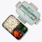 Bento Box, Natural Wheat Safety 1000 ML Lunch Box Leakproof Food Storage Container with Chopsticks, Spoon for Kids Adults, Microwavable, Dishwasher Safe (Green)