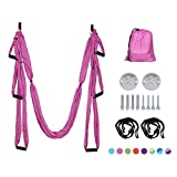 DYNAMIC SE Yoga Hammock Anti-Gravity Nylon Aerial Yoga Swing Set Includes Suspension Ceiling Mounts with Screws and Extension Straps