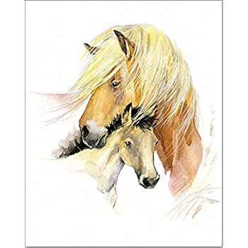 Amazon.com: 4 Framed Horse Art Prints Mare Pictures Foal Posters ...