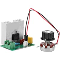 AC 0-220V 4000W 40A Regulador de voltaje del
