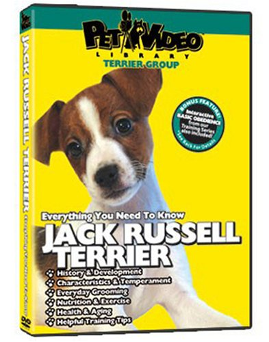 JACK RUSSELL TERRIER DVD: Everything You Should Know + Dog & Puppy Training Bonus ()