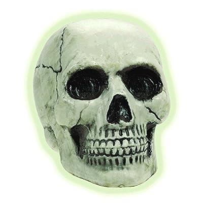 Glow in the Dark Skull: Toys & Games