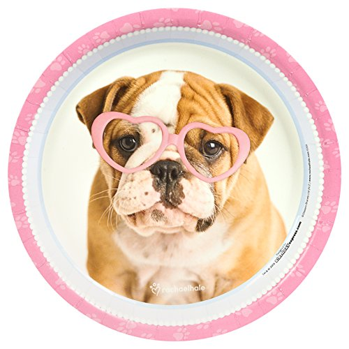 BirthdayExpress Rachael Hale Glamour Dogs Party Supplies - Dinner Plates (8)
