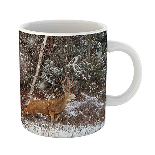 Emvency Coffee Tea Mug Gift 11 Ounces Funny Ceramic Beautiful Buck Stag Large Antlers Running Through the Forest When It Snowing Gifts For Family Friends Coworkers Boss Mug ()