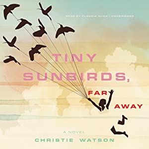 Tiny Sunbirds, Far Away Audiobook