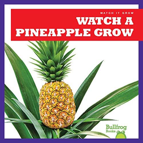 Watch a Pineapple Grow (Bullfrog Books: Watch It Grow)
