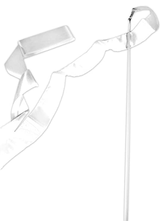 Amazon Com Csi Cannon Sports Black Gymnastics Ribbon Wand Toys Games
