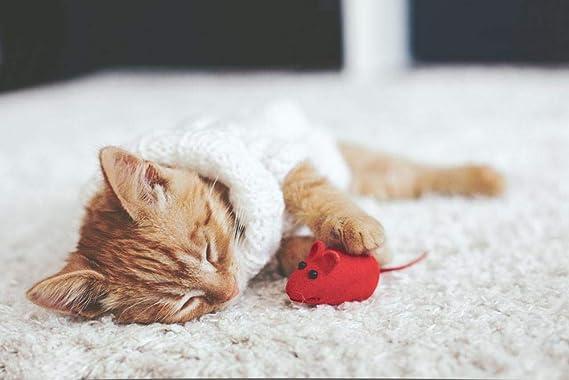 Puzzle 1000 Piezas Puzzles Para Adultos Jugando Ratón Gato Niño ...