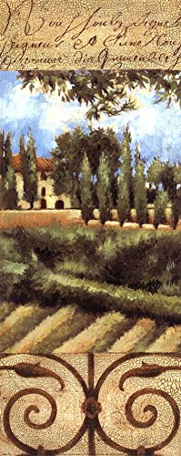 Villa in Tuscany by Liz Jardine Art Print, 8 x 20 inches