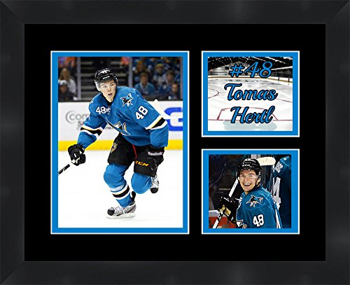 San Jose Sharks Picture Frame Sharks Picture Frame