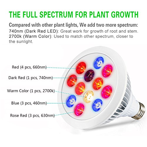 519RcYqRQML - Swiftrans LED Grow Light Bulb, 24w Plant Grow Light with Full Spectrum for Indoor Plants Greenhouse and Hydroponic Growing
