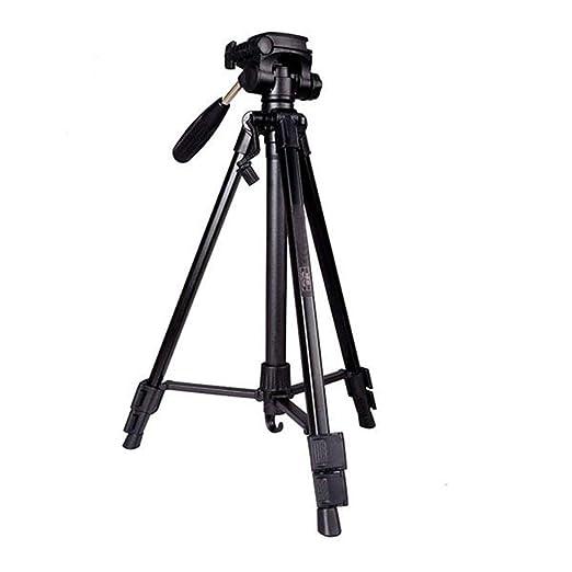La cámara del trípode del recorrido Profesional de aluminio ...