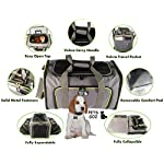 Premium Expandable Pet Carrier – Large (19x12x12), Soft-Sided, Dual Expansions, No Sag, Safe / Comfortable / Foldable / Airline Approved