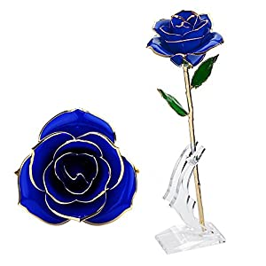 Wefond Long Stem 24K Gold Rose Flower Foil Trim Romantic Rose with Display Stand in Gift Box for Valentine's Day, Anniversary, Birthday, Wedding, Thanksgiving and Christmas 76
