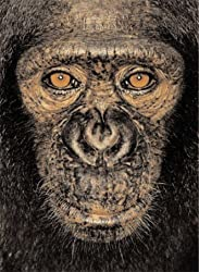 James & Other Apes by James Mollison, Jane Goodall (2005) Hardcover