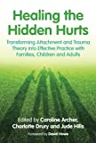 img - for Healing the Hidden Hurts: Transforming Attachment and Trauma Theory into Effective Practice with Families, Children and Adults book / textbook / text book