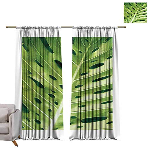 - berrly Thermal Insulating Blackout Curtain Leaves of Plants Illuminated The Sun -4 W72 x L96 Waterproof Window Curtain