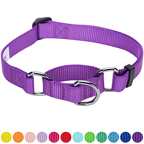 Martingale Dog Collar Leash (Blueberry Pet 12 Colors Safety Training Martingale Dog Collar, Dark Orchid, Medium, Heavy Duty Nylon Adjustable Collars for Dogs)
