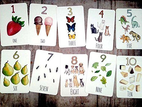 Number Recognition Counting Flash Cards by Stephanie Hathaway Designs