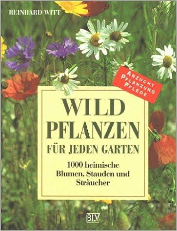 Wildpflanzen Für Jeden Garten 1000 Heimische Blumen Stauden Und