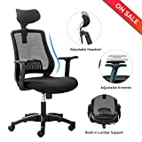 LONGEM High-Back Mesh Office Chair - Breathable Ergonomic Computer Desk Task Chair with Adjustable Arms and Headrest (125T-Black)