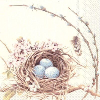 - Boston International 40 Count 3-Ply Paper Cocktail Napkins, Birds Nest with Eggs