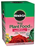 Outdoor Living : Miracle-Gro Water Soluble Rose Plant Food, 1.5 lb.