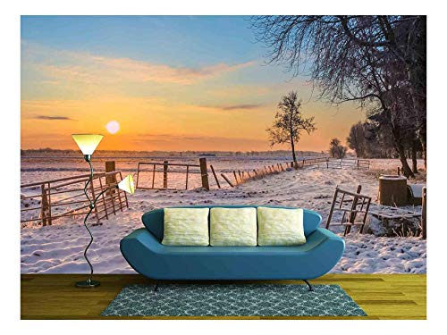 wall26 - Gates and Fences in Winter Landscape with Snowy Fields and Blue Sky in Drenthe Netherlands - Removable Wall Mural | Self-Adhesive Large Wallpaper - 66x96 inches