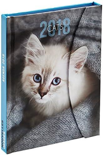 Nouvelles Images – Agenda práctica bolsillo gatos 2018: Amazon.es: Oficina y papelería