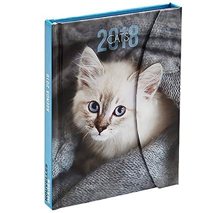 Nouvelles Images – Agenda práctica bolsillo gatos 2018