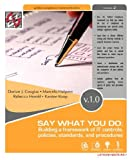 img - for Say What You Do: Building a Framework of It Controls, Policies, Standards, and Procedures book / textbook / text book
