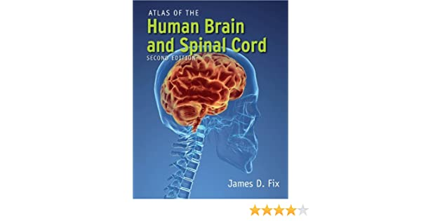 Amazon Atlas Of The Human Brain And Spinal Cord Ebook James