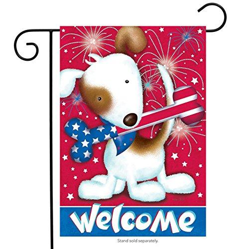 Briarwood Lane Festive Fido Patriotic Garden Flag Dog Fireworks Bone 12.5 x 18