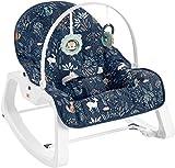Fisher-Price Infant-to-Toddler Rocker – Moonlight