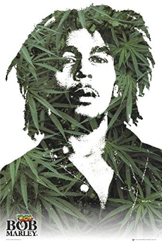 Bob Marley Poster Flag (Bob Marley Leaves Poster Print (24 X 36))