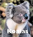 Koalas, Sandra Lee, 1567663966