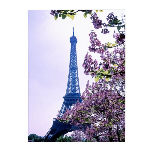Trademark Fine Art Eiffel Tower with Blossoms by Kathy Yates Canvas Wall Art,