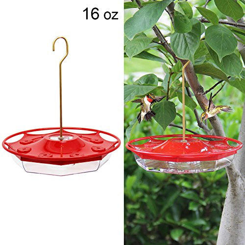 Feeder Hanging Blossom Hummingbird (Juegoal 16 oz Hanging Hummingbird Feeder with 8 Feeding Ports)