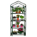 Homewell 4 Tier Mini Greenhouse 27″L x 19″W x 62″H Review