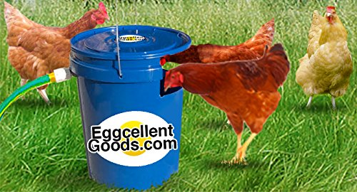 Automatic Chicken Poultry Waterer Connect product image