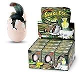 GeoCentral Hatch'em Snake Egg Growing Pet by MD Wholesalers