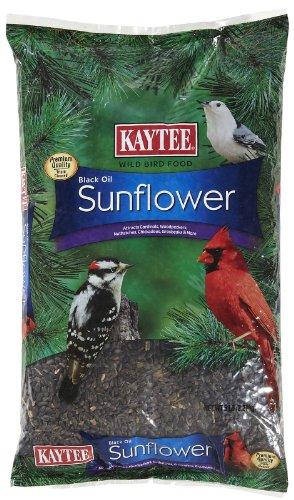 Birds Oil - Kaytee Wild Bird Food Black Oil Sunflower - 5 lb