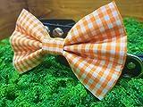 Orange Gingham Checkered Pet Bow Tie