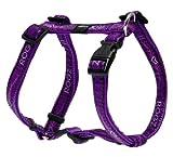 Rogz Fancy Dress Medium 5/8-Inch Scooter Adjustable Dog H-Harness, Purple Chrome Design, My Pet Supplies