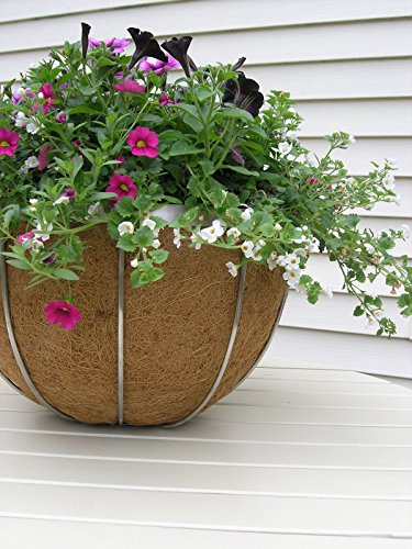 17'' Stainless Steel Hanging Basket - 3 Pack by Garden Artisans