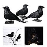 Tinksky Halloween Black Crow Realistic Feather Crow Artificial Bird Raven Prop Art and Crafts For Halloween Party Decoration Pack 3pcs