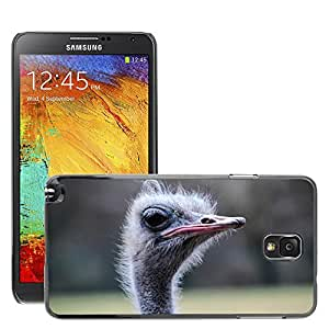 Etui Housse Coque de Protection Cover Rigide pour // M00111143 Ramo Animal Pájaro Ave incapaz de volar // Samsung Galaxy Note 3 III N9000 N9002 N9005