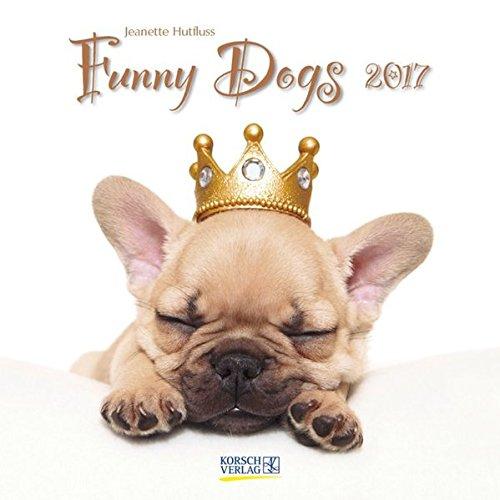 Funny Dogs 2017: Broschürenkalender mit Ferienterminen