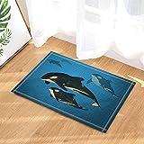 GoHEBE Underwater Animals Decor A family of Orca Whales Swimming in the Ocean Bath Rugs Non-Slip Doormat Floor Entryways Indoor Front Door Mat Kids Bath Mat 15.7x23.6in Bathroom Accessories